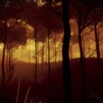 Скриншот ESSENCE