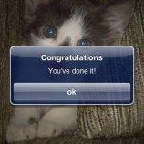 Скриншот Cat Puzzle – Изображение 3