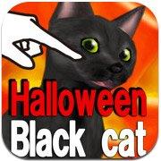 Обложка Halloween Black Cat