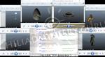 Инопланетяне вGTA 5: поиски сдвинулись смертвой точки. - Изображение 2