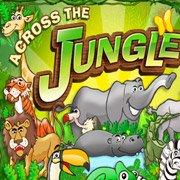 Across the Jungle