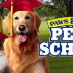 Скриншот Paws & Claws: Pet School – Изображение 4