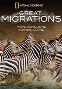 Обложка Great Migrations