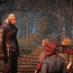 Скриншот The Witcher 3: Wild Hunt – Изображение 29