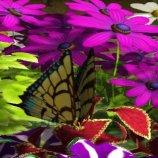 Скриншот My Garden
