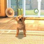 Скриншот PlayStation Vita Pets – Изображение 2