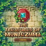 Скриншот The Treasures Of Montezuma