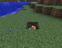 """Приветствую вас дорогие друзья !  Открылся новый сервер """" Minecraft """" .Сразу предупреждаю !   Сервер работает в день ... - Изображение 1"""