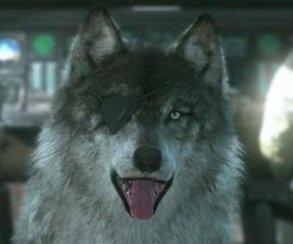 Псина, ДиДи и Чоп поборются за звание лучшей игровой собаки года