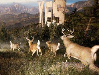 Природа и мир Far Cry 5 в гифках