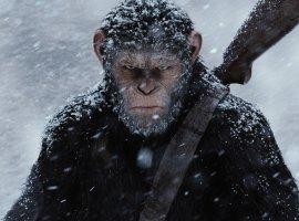30 главных фильмов 2017. «Планета обезьян: Война»— мощная серия недооцененной франшизы