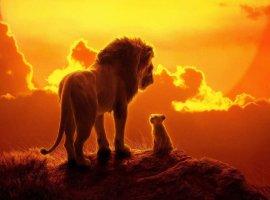 Тимон, Пумба или Муфаса? Узнайте, кто вы! К выходу «Короля Льва» Google и Disney запустили тест