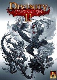 Divinity: Original Sin II – фото обложки игры