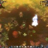 Скриншот Dawn of Magic – Изображение 10