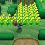 Скриншот Pokemon X & Y – Изображение 1