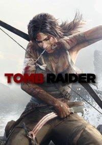Tomb Raider (2013) – фото обложки игры