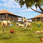 Скриншот Paws & Claws Pet Vet: Australian Adventures – Изображение 3