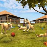Скриншот Paws & Claws Pet Vet: Australian Adventures – Изображение 3