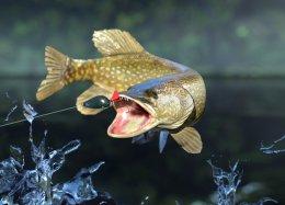Симулятор рыбалки Fishing Planet вышел в Игровом центре Mail.Ru