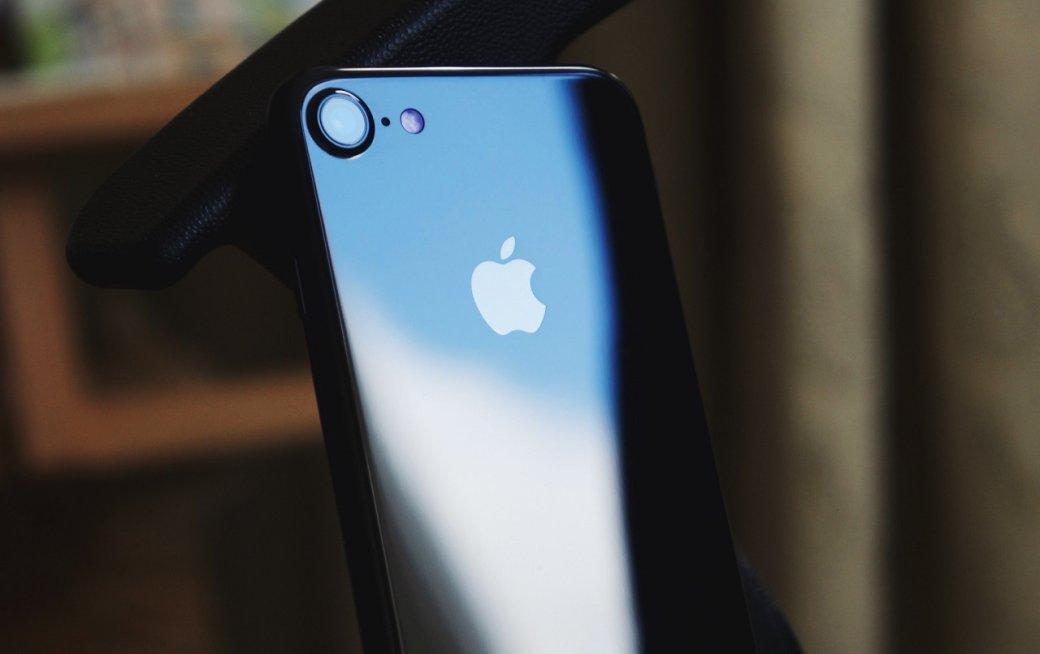 Завершился фотоконкурс «Снято наiPhone». Apple выбрала десятку лучших фото   Канобу - Изображение 7636