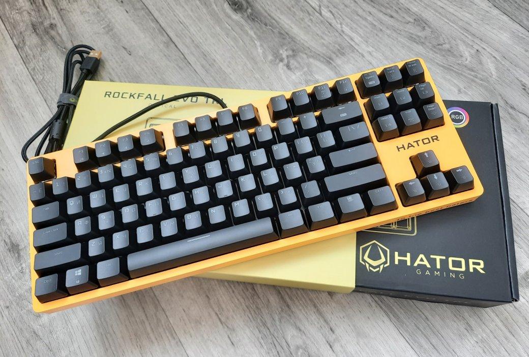 Обзор клавиатуры Hator Rockfall EVO TKL. Бюджетная оптическая клавиатура | Канобу - Изображение 1438
