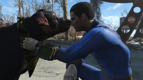 Энтузиаст сделал мод для Fallout 4, который позволяет погладить любую собаку в игре