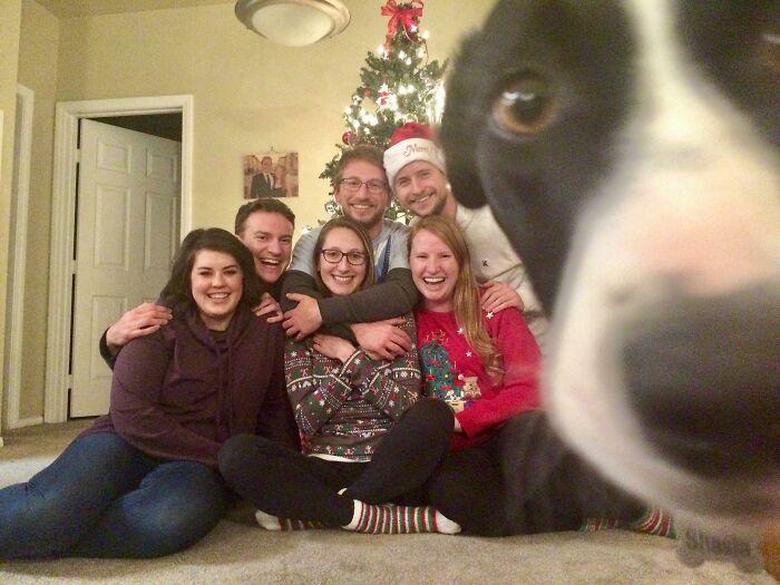 Галерея дурацких рождественских фотографий, которые испортили собаки | Канобу - Изображение 5914