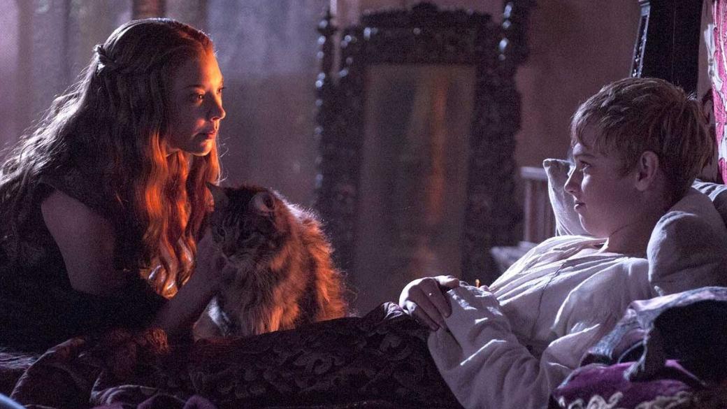 Фанаты «Игры престолов» больше не увидят кота по кличке Сир Царапка. Его убила Серсея за кадром | Канобу - Изображение 1